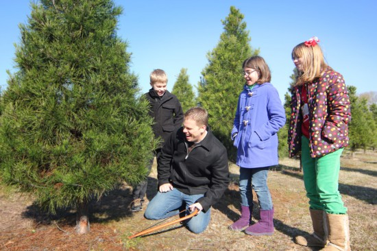 dad and kids laugh as they cut a Christmas tree