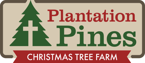 Plantation Pines Christmas Tree Farm