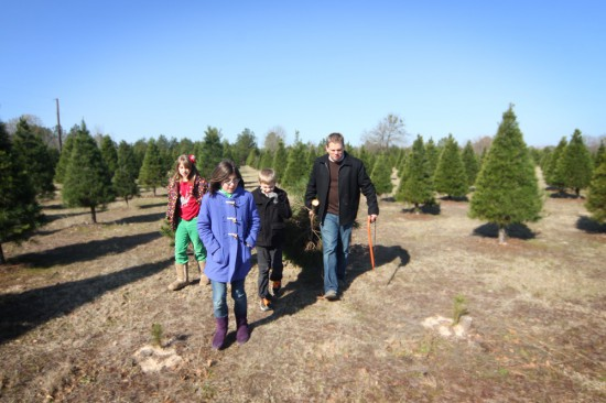 dad-and-kids-with-freshly-cut-tree