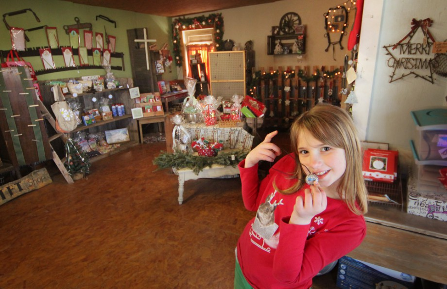 Our Cozy Christmas Gift Shop